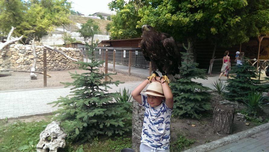 Бахчисарай_парк_миниатюр_ребенок_сокол