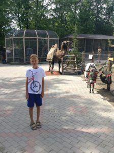 Спортивный лагерь Планета Спорта в Евпатории 4